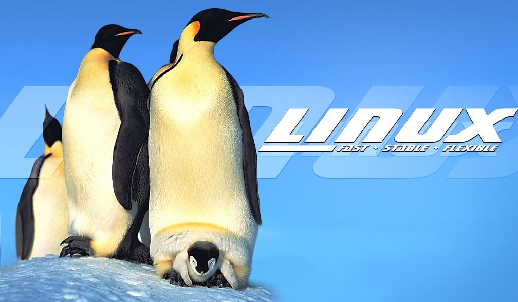 Установка Linux в Ростове-на-Дону